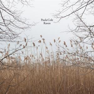 Paula Cole, Raven, 2013 rok